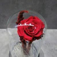 A FOREVER ROSE in a tall dome glass  / Ενα ΔΙΑΤΗΤΗΜΕΝΟ ΤΡΙΑΝΤΑΦΥΛΛΟ μεσα σε θολωτή γυάλα